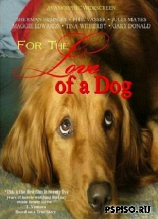 �� ����� � ����� / For the Love of a Dog (2008/DVDRIP)