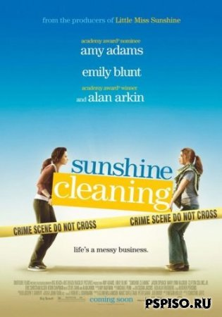 Чистка до блеска / Sunshine Cleaning