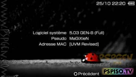 Custom Firmware 5.03GEN-B для HEN