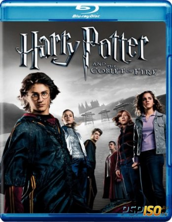 ����� ������ � ����� ���� / Harry Potter and the Goblet of Fire [HDRip]