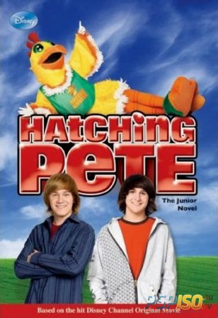 Пит в перьях / Hatching Pete