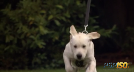 ����� � � 2 | Marley & Me: The Puppy Years (2011) [HDRip]