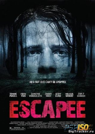 Беглец / Escapee (2011) [DVDRip]